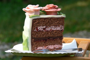 Višňový dort řez
