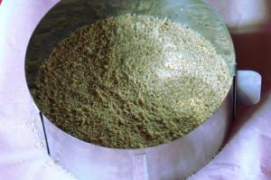 sušenkový korpus
