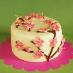 třešňový dort s marcipánem a griotkou